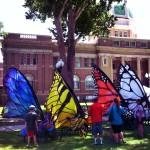 Roswell__Butterflies__