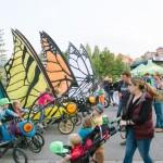 Breck_Butterflies_1
